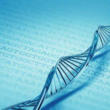 Как сдать биологию в медицинском вузе