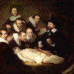 Как сдать экзамен по анатомии