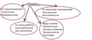 klassificatia_pamyati