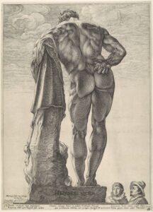 anatomia_myshc_goleni