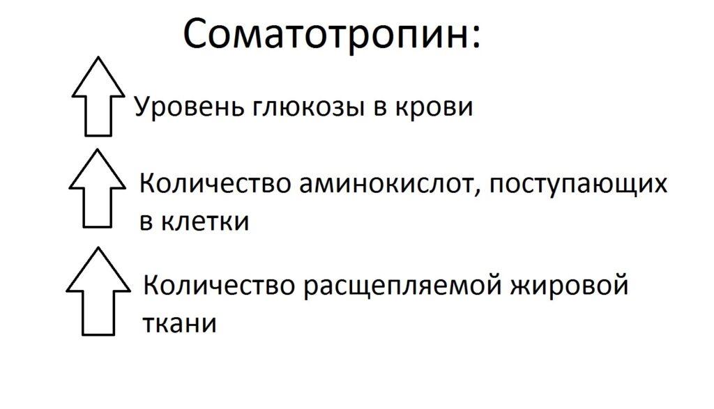 effecty_somatotropina1