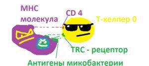 makrogag_i_t-helper