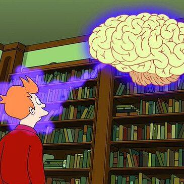 Анатомия конечного мозга, часть 1